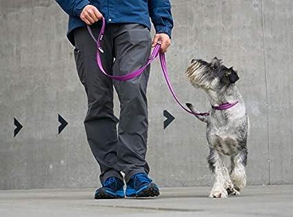 DOG Copenhagen Urban Freestyle Leash Hunting Green Leine FL-HG ...
