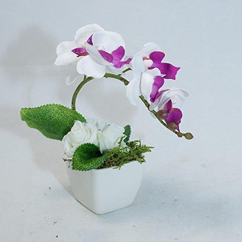 Kleines Phalaenopsis Tischgesteck Im Plastiktopf Tischdeko Mit