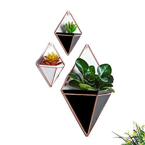 Candyqueen 1Pcs Hanging Planter Geometric Wall Decor Container Wall Vases Creative Bracket Home Decor (S, Black) by Candyqueen