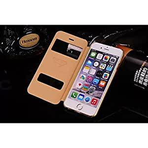 PG Special Design Solid Color Good Quality PU Leather Full Body Case for iPhone 6 Plus (Black)