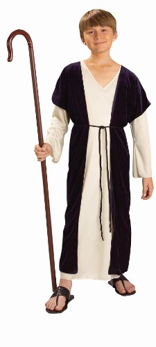 [Forum NoveltiesBiblical Times Shepherd Costume, Child Medium] (Bible Costumes For Kids)