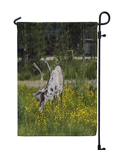 (Antlers-Flowers -Garden Flag Outdoor Flags 12x18 inch White Reindeer and Eating Flowers Animal Antlers Double Stitched Weatherproof Seasonal Flag for Yard Porch Celebration Decor)