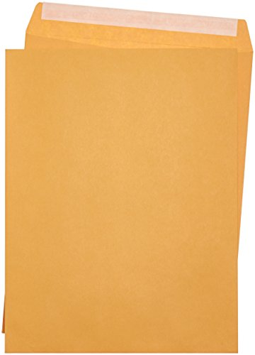 AmazonBasics Catalog Mailing Envelopes, Peel & Seal, 10x13 Inch, Brown Kraft, 250-Pack (White Self Sealing Catalog Envelopes)