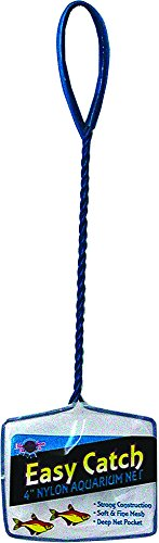 (Blue Ribbon Pet Products ABLEC4 Easy Catch Fish Net, 4-Inch)