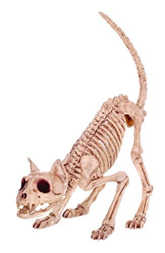 Halloween Skeletons - Crazy Bonez Skeleton Cat - Lil' Kitty Bonez