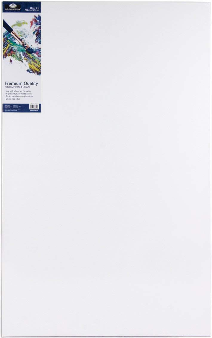 """Hobby Painters Bulk Pack of 14 100/% Cotton for Acrylic Painting Primed Oil Paint /& Wet Art Media ARTEZA 9x12/"""" White Blank Canvas Panel Boards Canvases for Professional Artist"""