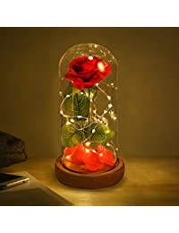 Beauty and Beast Roses, Dream Flower Red Silk Rose with LED Light and Fallen Petals on a Glass Dome Wooden Base, Best for Weddings, Anniversaries, Educational Gifts for Kids