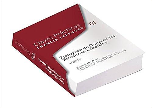Claves Prácticas Protección De Datos En Las Relaciones Laborales: 2ª Edición por Lefebvre-el Derecho epub