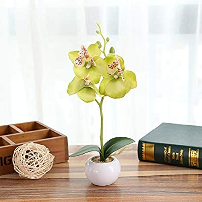 CANAFA-Home & Kitchen Artificial Flowers Simulated Plant Bonsai Indoor Butterfly Orchid Bonsai Plants Elegance Tranquilit: Home & Kitchen
