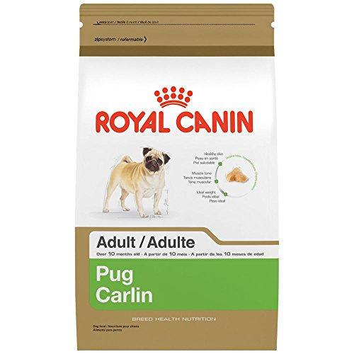 Cheap ROYAL CANIN BREED HEALTH NUTRITION Pug Adult dry dog food, 10-Pound