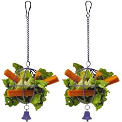 Interpet Limited Superpet Veggie Twister (2 Pack)