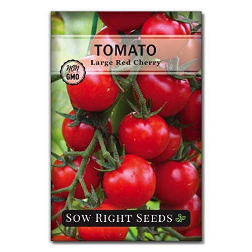 Sow Right Seeds - Large Red Cherry Tomato Seed for Planting - Non-GMO Heirloom Packet with Instructions to Plant a Home Vegetable Garden - Great Gardening Gift (1)