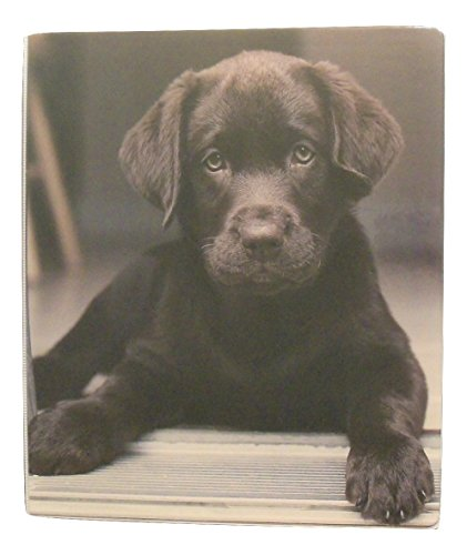 carolina-pad-studio-c-1-o-ring-vinyl-binder-with-pockets-puppy-paws-puppy-eyes-chocolate-lab-10-x-11