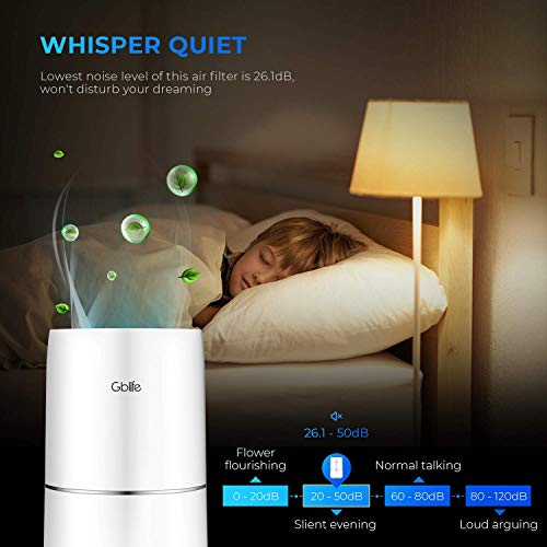 GBlife Air Purifiers for Home Bedroom and Office, True HEPA Filter Small Room Air Cleaner for Smoke, Pets Hair, Quiet Odor Eliminator with Blue Night Light