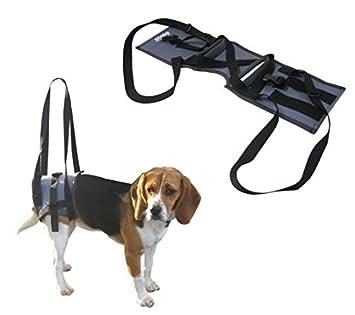 Handy soporte Veterinario Canis-Arnés para perros con graves problemas de las patas traseras.