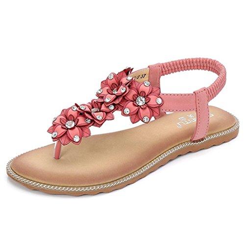 GIY Women's Summer Thong Flat Sandals T-Strap Flower Slip on Summer Beach Gladiator Sandal Flip Flops Shoes Pink ()