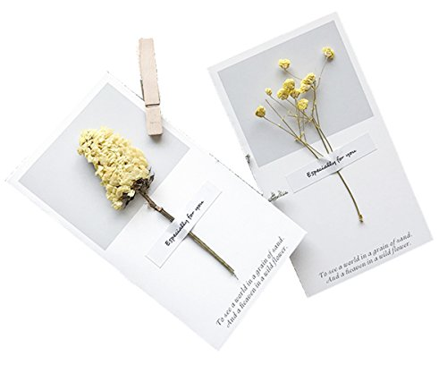 Aifang Vintage Thanksgiving Greeting Wish Cards Kraft Handmade Dried Flowers Thank You Notes Birthday Party Invitation Cards Set, 11 Designs with Envelopes, Pack of 11