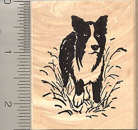 Border Collie Rubber Stamp
