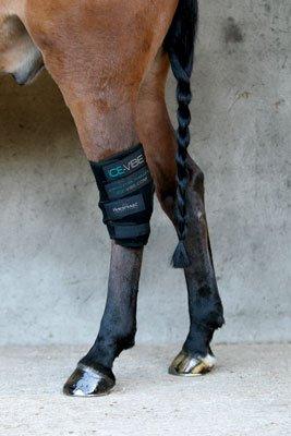 Horseware Ice Vibe für das Sprunggelenk/Hock Wrap