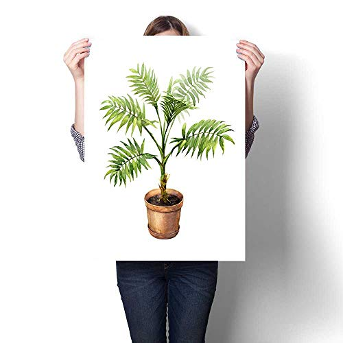 (Anshesix Wall Art Canvas Prints Palm in Clay Flowerpot Print Paintings for Home Wall Office Decor 32