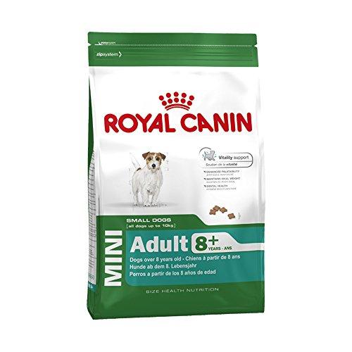 ROYAL CANIN Hundefutter Mini Adult 8+, 8 kg, 1er Pack (1 x 8 kg)