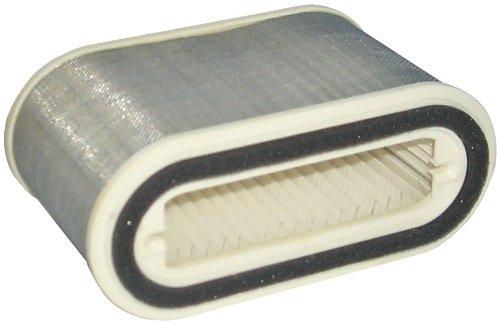 Hiflofiltro HFA4910 Premium OE Replacement Air Filter