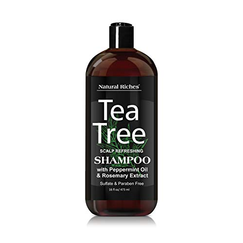 (Tea Tree special anti-dandruff Shampoo - with 100% Pure Tea Tree Oil, for Itchy and Dry Scalp, Sulfate Free, Paraben Free - for Men and Women. 16 fl oz.)