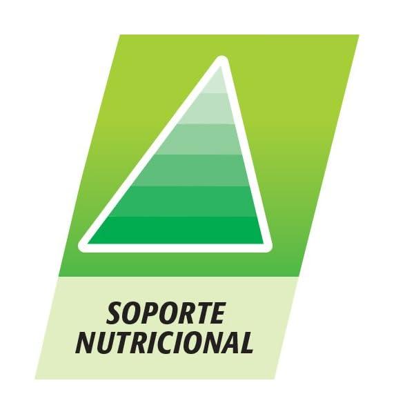 Multicentrum Junior Complemento Alimenticio con 12 Vitaminas y 4 Minerales, Con Vitamina B1, Vitamina B6, Vitamina B12, Hierro, Vitamina C, 20 Comprimidos Masticables Sabor a Fruta 4
