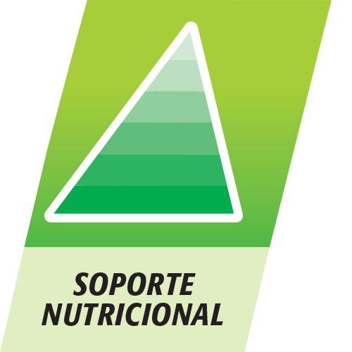 Multicentrum Junior Complemento Alimenticio con 12 Vitaminas y 4 Minerales, Con Vitamina B1, Vitamina B6, Vitamina B12, Hierro, Vitamina C, 30 Comprimidos Masticables Sabor a Fruta 7