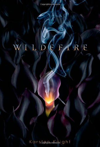 Image of Wildefire