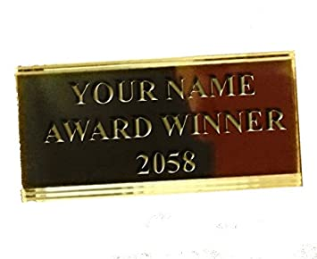 Engraved Award Picture Trophy Plate//Plaque Gold//Silver Many Sizes Trophies