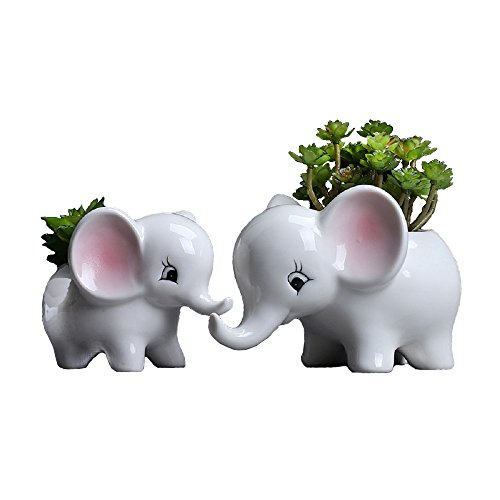 Youfui Cute Animal Succulent Planter Flower Pot Decor for Home Office Desk (Pair of Elephant)