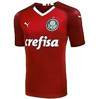 Camisa Puma Palmeiras Gk Third J