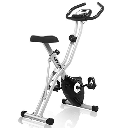 ANCHEER Folding Exercise Bike with APP Simulation Game, Indoor Stationary Bike with 10-Level Adjustable Magnetic Resistance & Tablet Stand & Large and Comfortable Seat (Grey)