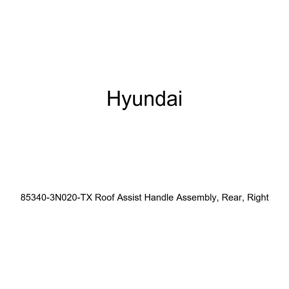 Rear Right Genuine Hyundai 85340-3N020-TX Roof Assist Handle Assembly