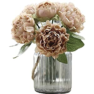 Anlise European Style Peony Artificial Flowers 1 Bunch Bouquet Silk Flower for Home Bridal Wedding, Coffee 6
