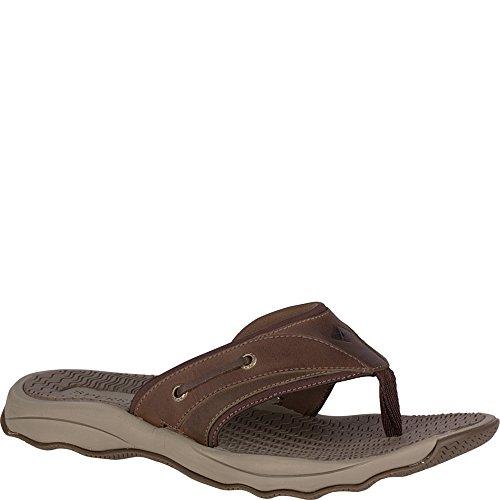 d5826c592f4be9 Sperry Top-Sider Men's Outer Banks Thong Sandal - Choose SZ/color | eBay