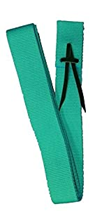 "Showman TEAL Premium Webbed Nylon Saddle Cinch Tie Strap 1.75"" w x 5.75' long"