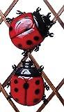 Rouge vif coccinelle Jardin Coloré insectes mur Décoration Clôture