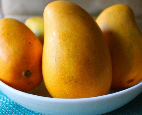 Ataulfo Mango - Mexican Mangoes ()