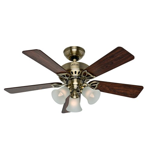 Hunter 53078 The Beacon Hill 42-Inch Ceiling Fan with Five Rosewood Medium Oak Blades and Light Kit, Antique Brass