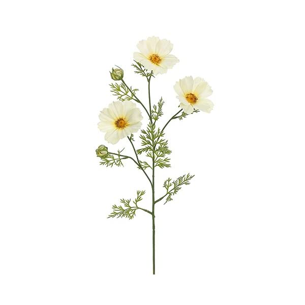 30″ Cosmos Spray Soft Yellow (pack of 12)