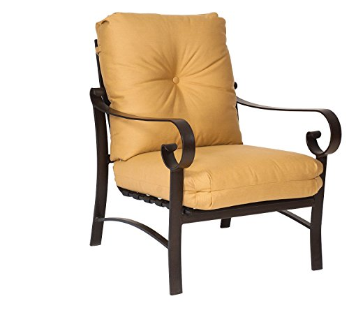 Woodward Belden Cushion Stationary Lounge Chair, Sandston...