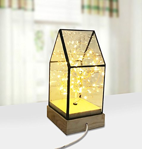 Light Energy Star Chassis - LongYu Night light Solid wood fire tree Silver flower Glass cover USB charging House lights Bedroom Home DIY Decorative atmosphere Button night light Birthday gift Gifts warm light Energy saving