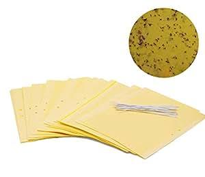 Papel atrapa moscas de doble cara Plai (20x 25cm), color amarillo, incluye sujetacables.
