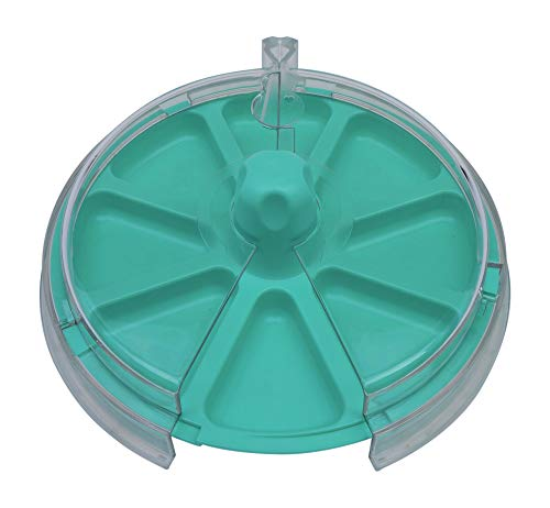 8 the Plate for Picky Eaters Spins inside Clear Cover to Promote Healthy Eating Habits - Hang Ten Teal by 8_the_Plate