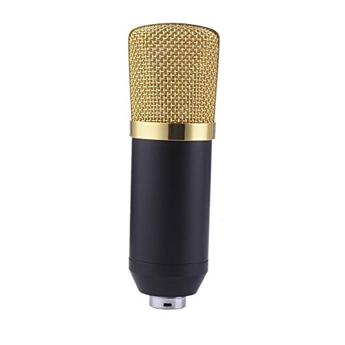 Sanmubo USB Microphone Portable Handheld Karaoke Mic Easter Gift Home Party Birthday Speaker Machine Network K Song Computer Chat DJ Anchor Singing Capacitor Recording Microphone