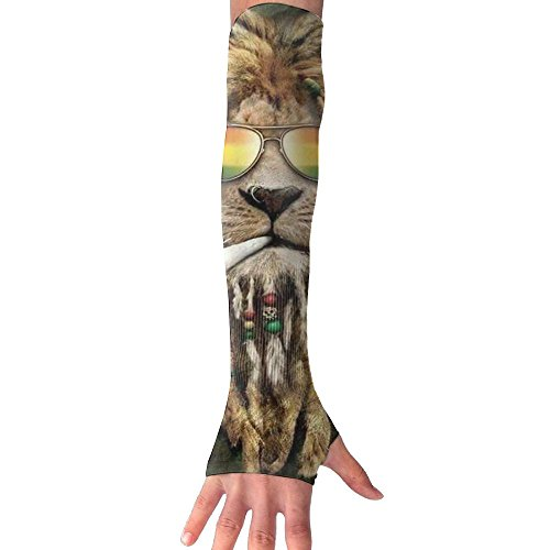 Sunglasses Lion Long Sleeve Sun Protection Arm Sleeves Arm Cooling Sleeve Cycling Outdoor Sports - Sunglasses Schoolboy