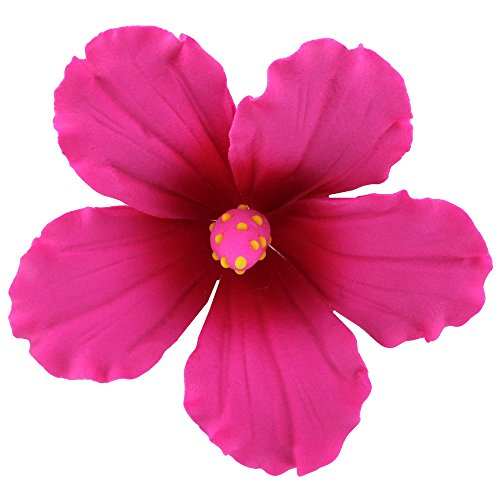 Hibiscus, Pink with Fuchsia, Large 9 Count by Chef Alan Tetreault