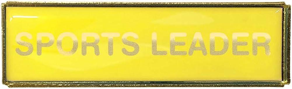Gold Finish Capricornone Sports Leader Rectangle Budget Badge